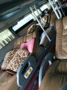 Bus couchette avec plaids léopard et coussins