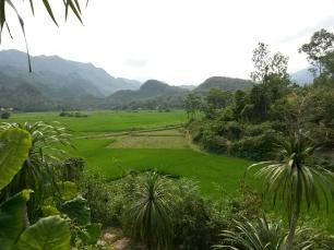 Entre rizières et montagnes