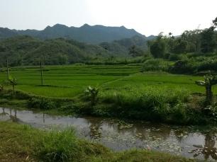 Mai Chau, paysage de rizières et montagnes.